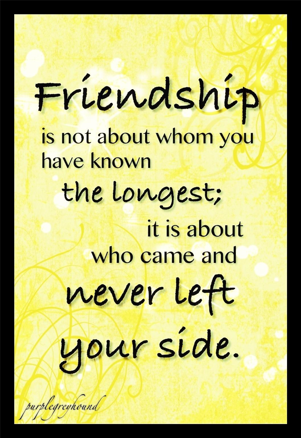 non friendship quotes